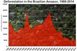 Annual deforestation in the Brazilian Amazon