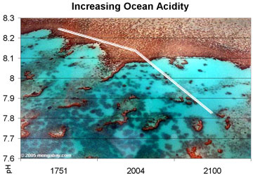 Ocean Acidification Graph