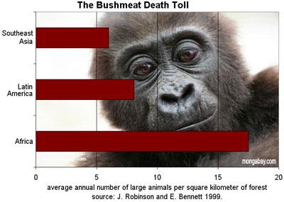 número de animais mortos regionalmente para o comércio de carne: África, Ásia e a Amazônia