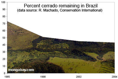 deforestation and forest cover for Brazil's mata atlantica in 2008