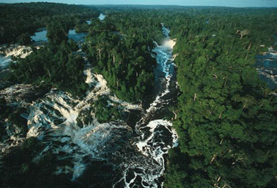 an introduction to gabons national parks In southwest gabon, about 9,000 people living in the town of gamba  national  park therefore represents a high risk of introduction or spread.