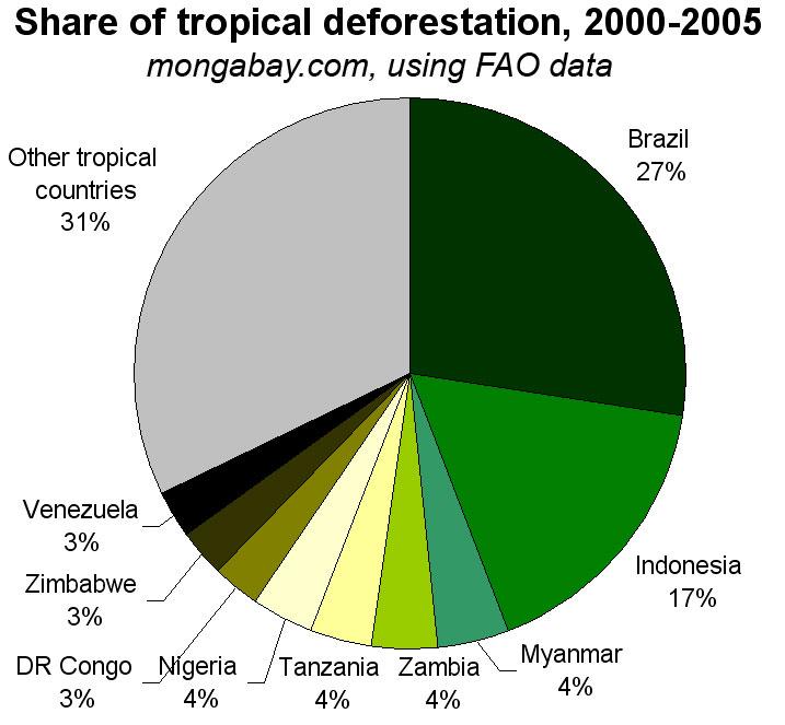 Deforestation Stats | Forest Data & Tables