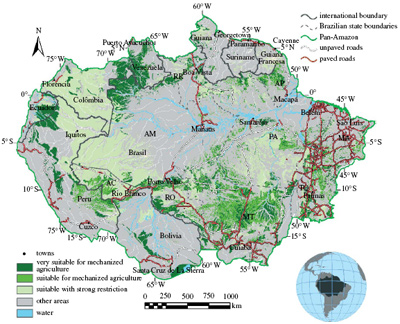 Metade Da Floresta Amazónica Estárá Perdida Dentro De 20