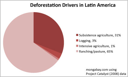 Drivers of deforestation