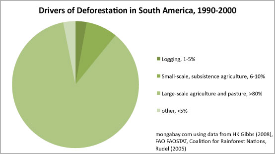 Chart: Drivers of deforestation in South America