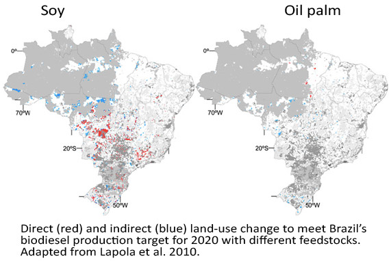 Map showing Direct (red) and indirect (blue) land-use change to meet Brazil's biodiesel production target for 2020 with soy and palm oil biodiesel