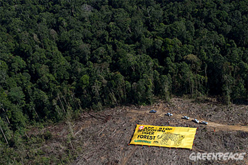 Asia Pulp & Paper fumbles response to deforestation allegations by