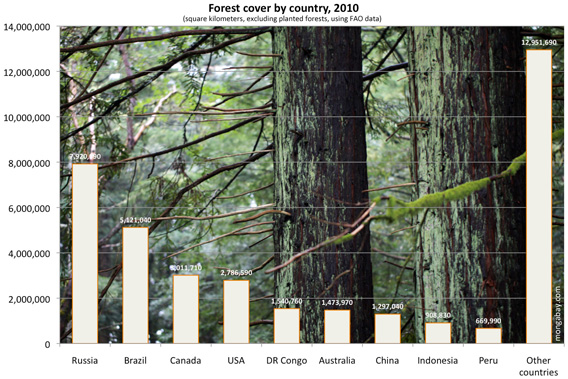 Global forest cover by country