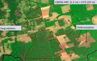 Detection of forest degradation.