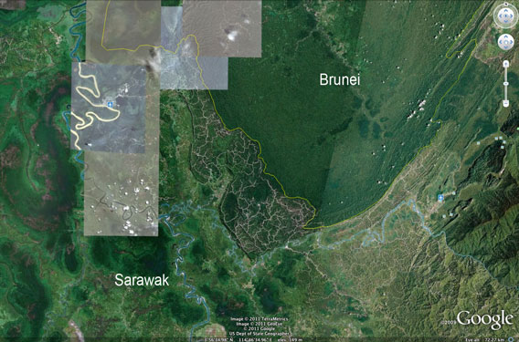 Logging roads and damaged forest in Sarawak compared with the largely intact forest of Brunei.