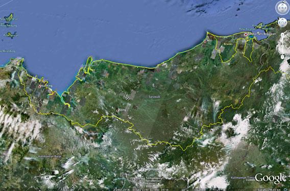 Sarawak forest