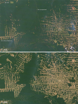 NASA pictures: top image shows deforestation in Brazil's western state of Rondônia in 2000; bottom image shows deforestation as of 2010.