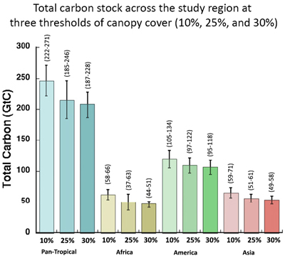 Forest carbon by region