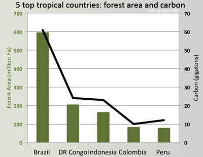 Top 5 countries: Forest extent and carbon by country