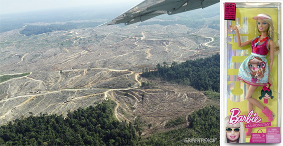 Forest clearing in the Bukit Tigapuluh Forest Landscape in central Sumatra
