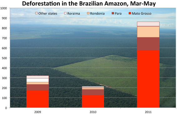 deforestation research essays Deforestation of the amazon essays research paper 11 march 2010 amazon deforestation the amazon essay on deforestation of the amazon deforestation.