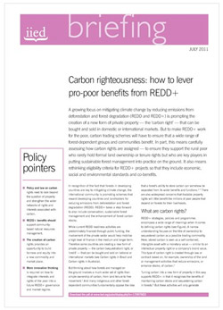 Carbon righteousness – how to ensure the poor benefit from REDD