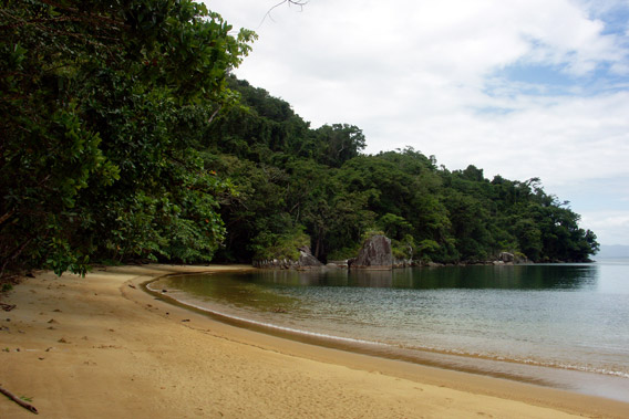 Beach on Nosy Mangabe, a tropical island paradise for wildlife enthusiasts