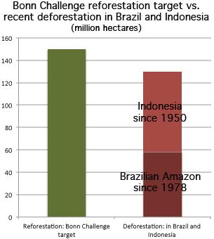 El objetivo del Desafío de Bonn en comparación con la deforestación reciente en Brasil e Indonesia. Fuentes: INPE (Brasil), Forest Watch (Indonesia).
