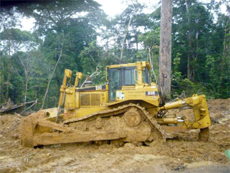 Bulldozer in the rainforest.