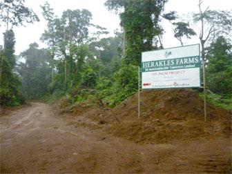 Panneau présentant les exploitations Herakles au Cameroun. Image fournie par  Save.