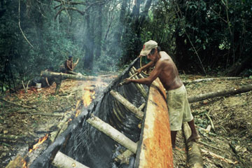 Crafting a dugout canoe in the Caura