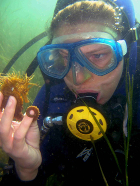 Dr Helen Scales and seahorse