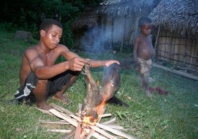 A man prepares an aye-aye