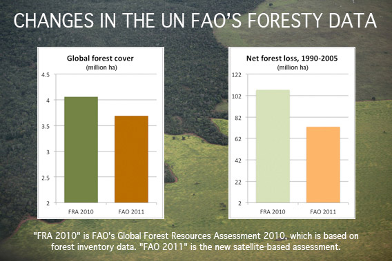 CHANGES IN THE UN FAO'S FORESTY DATA