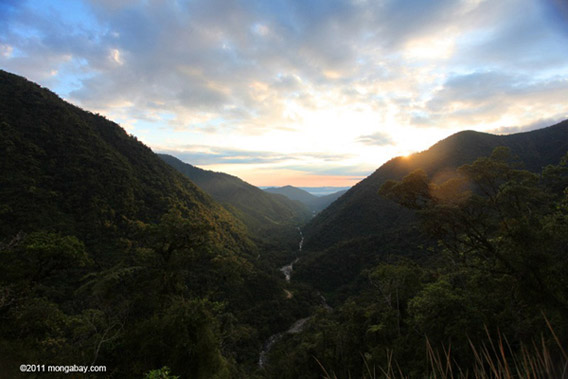Sunrise over the Kosñipata Valley, one of the gateways to the Western Amazon, the most biologically-rich area of forest on the planet