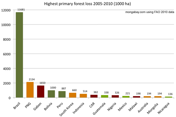 primary forest loss 2005-2010