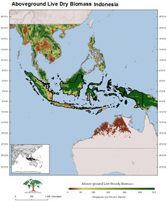 Indonesia carbon map