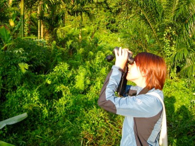 Margaret Southern birdwatching in Papua New Guinea
