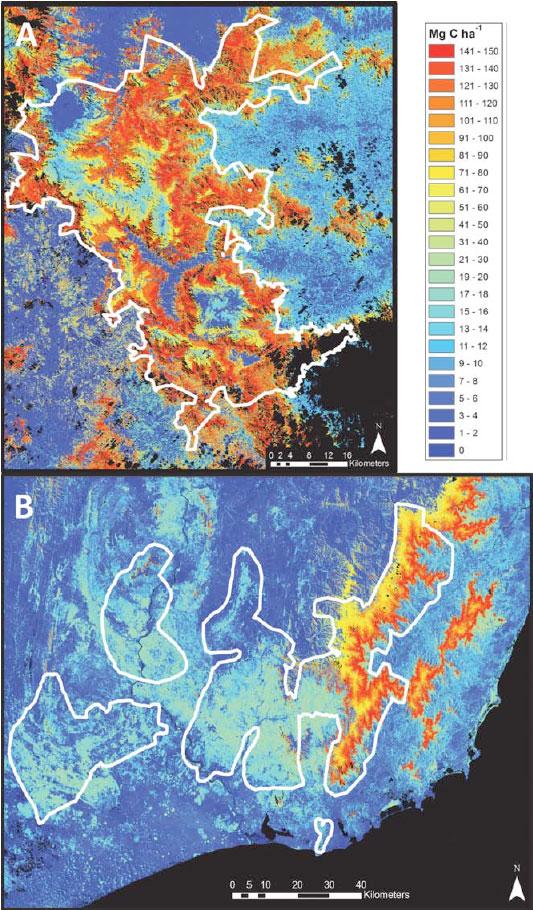 Densité de carbone au-dessus du sol (ACD) dans les régions Nord (A) et Sud (B) de Madagascar. La densité moyenne de carbone au-dessus du sol reflète la valeur médiane d'une classe d'habitat couverte et mesurée par le système LiDAR. Les zones noires sont des zones non observées ou des étendues d'eau.
