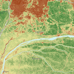 Carbon stock data for a section of forest in Equateur, DR Congo.