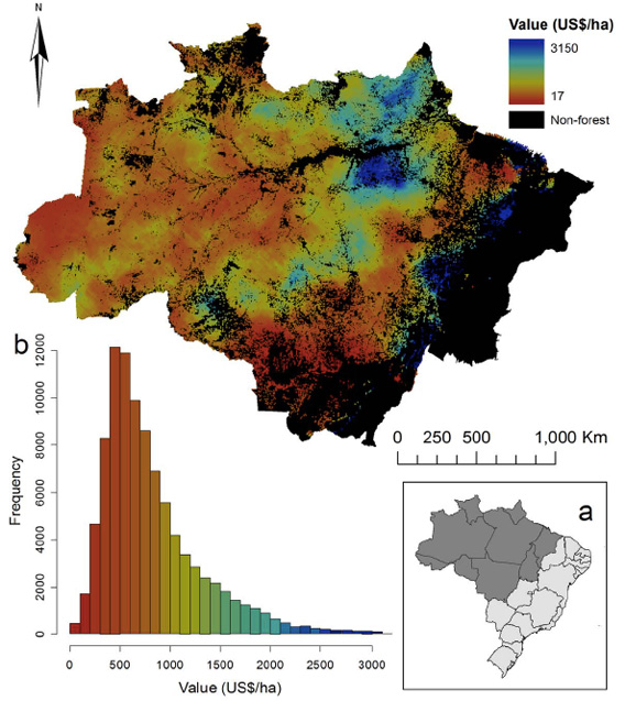 Charts and graphs about the Amazon rainforest