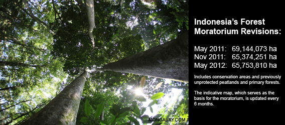 Indonesia's forest moratorium - by the numbers