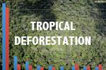 Tropical deforestation estimates