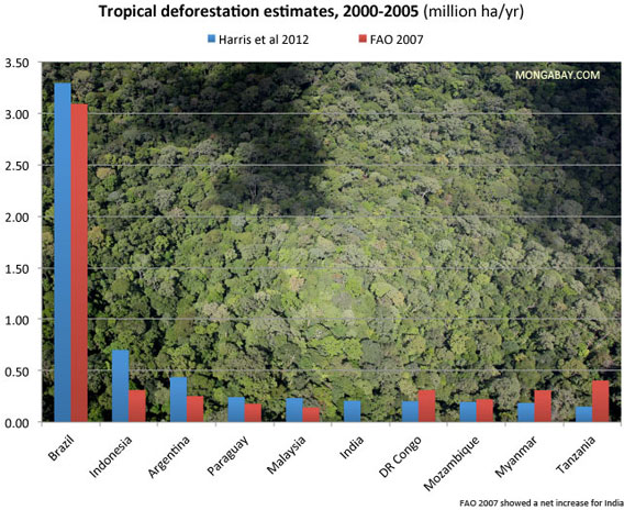 Countries with the highest gross forest loss between 2000 and 2005 according to the new study