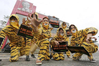 Greenpeace activists dressed as tigers, perform street theatre in front of a KFC outlet in Quezon City