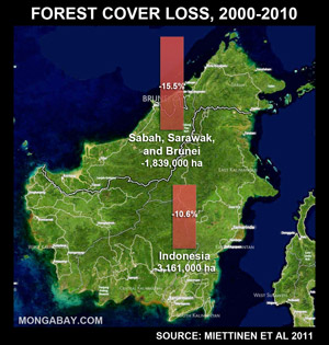 Forest loss in Borneo, 2000-2010, including Kalimantan, Sarawak, Sabah, and Brunei.