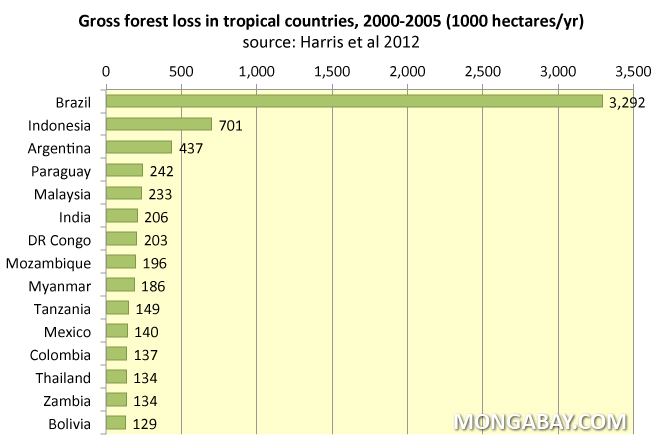 Chart: Gross forest loss in tropical countries, 2000-2005.