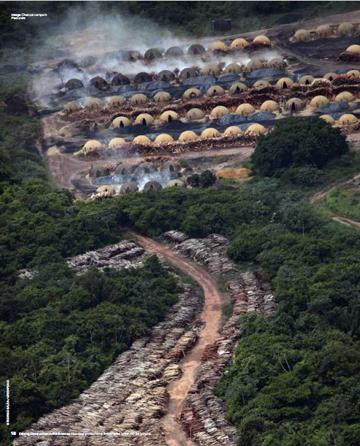 Pig iron deforestation
