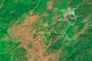 Burn Recovery in Yellowstone:2011