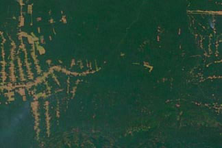 Amazon Deforestation:July 20, 2000