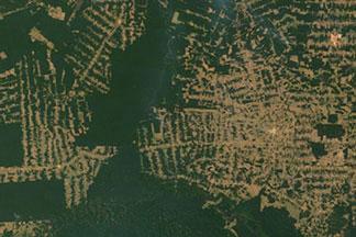 Amazon Deforestation:August 2, 2010