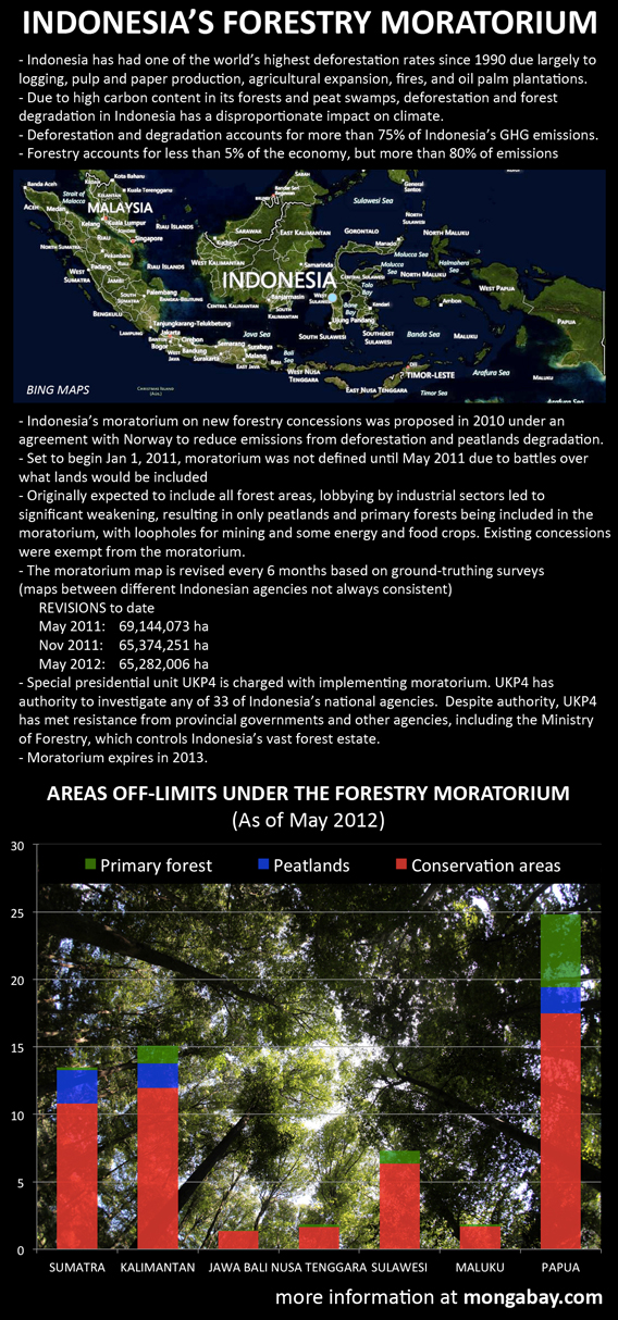 Chart: Indonesia's forest moratorium