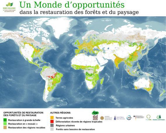 Le Partenariat mondial sur la restauration des paysages forestiers, l'institut des ressources mondiales, l'Université du Dakota du Sud, et l'Union internationale pour la conservation de la nature. Septembre 2011