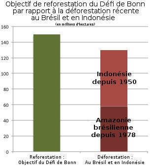 L'objectif de reforestation du Défi de Bonn en comparaison avec la déforestation récente au Brésil. Les sources des données proviennent de l'INPE pour le Brésil et de Forest Watch Indonesia pour l'Indonésie.