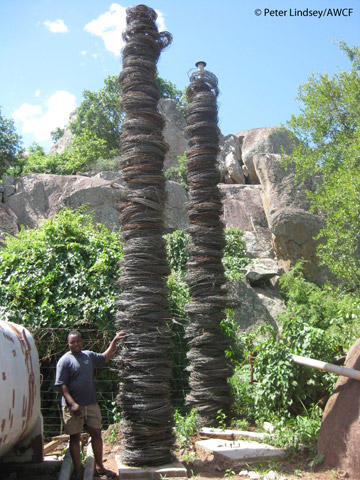 Two towers holding thousands of snares collected over nearly 5 years on Senuko Ranch, Savé Valley Conservancy, Zimbabwe. From August 2001 to July 2009, 84,396 wire snares were removed in this area and at least 6,454 wild animals killed. Photo by: Peter Lindsey/AWCF.
